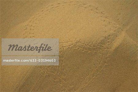 Dune en gros plan de désert, Maroc, Sahara