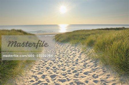 Sylt, îles de la Frise du Nord, Nordfriesland, Schleswig-Holstein, Allemagne