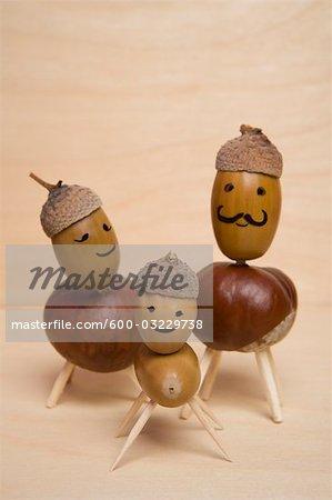 Famille des noix