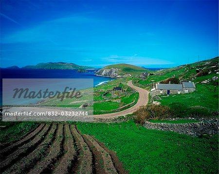 Co Kerry, Slea Head, View of the Blasket Islands
