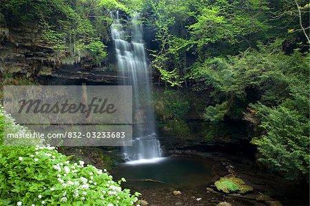 Glencar Waterfall, Co Sligo, Irlande ; W.B. Yeats a rendu cette cascade célèbre dans son poème « The Stolen Child »