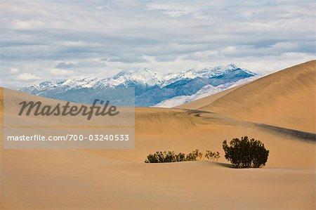 Dunes de sable plat Mesquite dans Death Valley National Park, Californie, USA