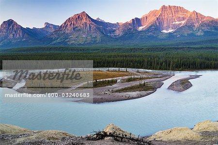 Athabasca Valley von Goat Lookout, Jasper Nationalpark, Alberta, Kanada