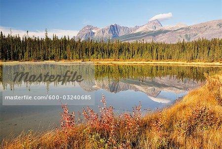 Aquila Mountain, Jasper National Park, Alberta, Canada