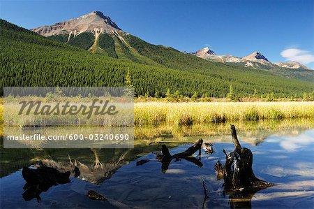 Lac Waterfowl, Parc National Jasper, Alberta, Canada
