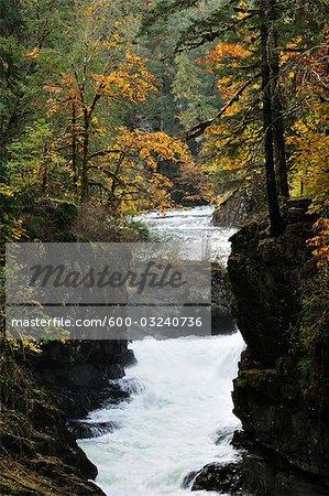 Stamp Falls, Parc Provincial des chutes timbre, l'île de Vancouver, en Colombie-Britannique, Canada