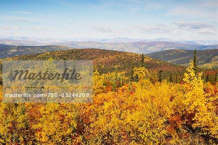 Ogilvie Mountains, Tintina Trench, Yukon Territorium, Kanada