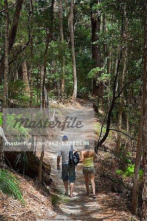 Les visiteurs marchent un des sentiers qui traversent les zones de forêt tropicale du monde du patrimoine répertorié UL Fraser Island.