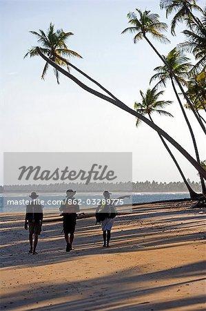 Brazil,Bahia,Tinhare Island,Tinhare Archipelago. The beaches and palm trees of the the Atlantic Coast of Bahia.