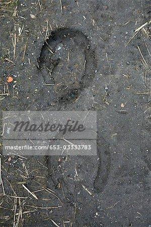 Abdrücke von Hufeisen in den Boden