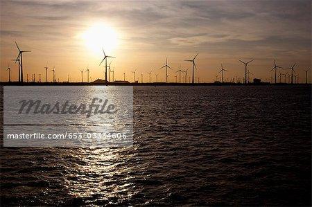 Vue des turbines de vent au-dessus de l'eau au coucher du soleil