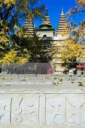 Temple de Chine, Beijing, Zhen Jue. Tibetan inscriptions sur la tombe de temple.