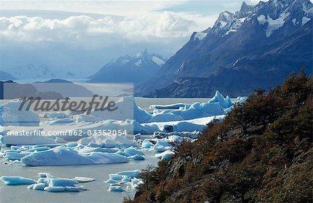 Icebergs se rassemblent à l'extrémité sud du Lago Grey, soufflé par le vent