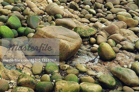 Rochers au bord de la vallée de Cot, Cornouailles, Angleterre