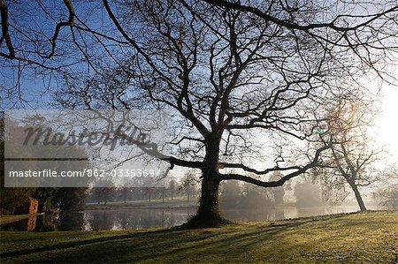 Angleterre, Dorset, Thorncombe. Forde Abbey fait partie de la frontière entre le Dorset et Somerset et son élégant ancien monastère cistercien et ses 12 hectares de jardins gagnante de prix situées dans une région de beauté naturelle exceptionnelle en font l'un des endroits touristiques West Dorset. Ici, le grand étang est dominée par la « Beech House » un matin de printemps.