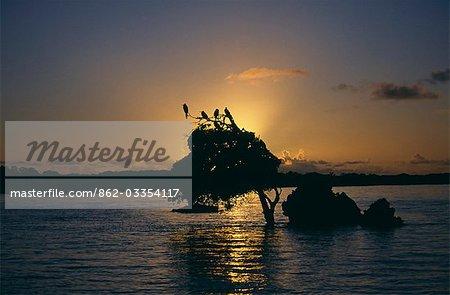 Seychelles,Outer Islands,Aldabra Atoll. Sunrise from Aldabra Lagoon.
