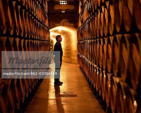 Le contremaître des travaux inspecte les tonneaux de vin de la Rioja dans les caves souterraines à Muga winery