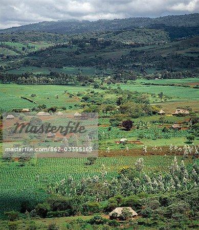 Riche en agriculture pays près des hauts plateaux du Ngorongoro du Nord de la Tanzanie.