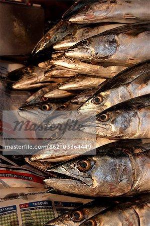 Mexico,Mexico City. Fish at Azcapotzalco market in Mexico City.
