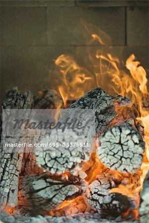 Journaux de brûler dans le four à bois