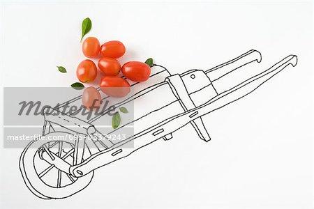 Veritables Tomates Cerises Sur Dessin De Brouette Photographie