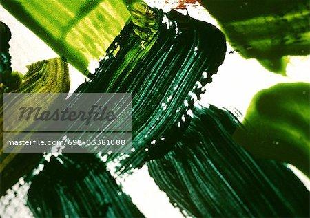 Tracés de peinture vert