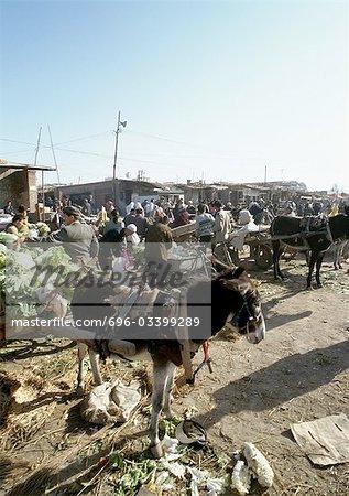 Chine, Xinjiang, Turpan, ouvrez Bazar air, âne attelé au panier