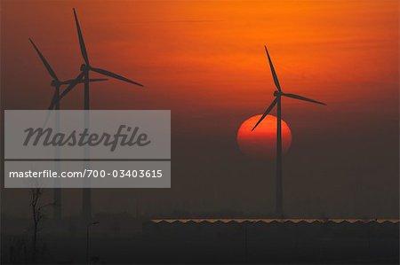 Wind Turbines at Sunset, Kapelle, Zeeland, Netherlands