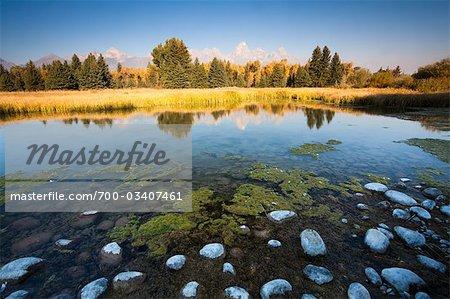 Kieselsteine in Blacktail Teich, Grand Teton im Hintergrund, Grand-Teton-Nationalpark, Wyoming, USA