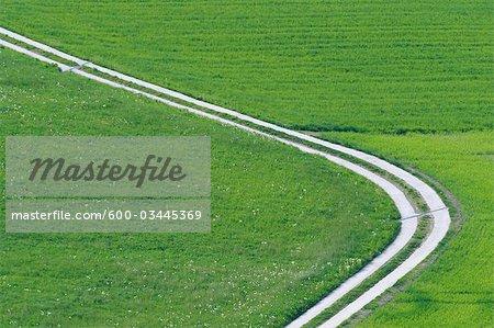 Piste, terrain, Canton de Berne, Suisse
