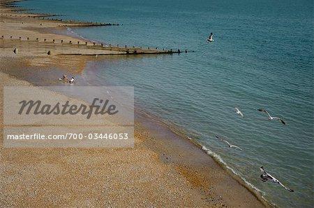 Vue d'ensemble de la plage avec des filles jouant dans le sable