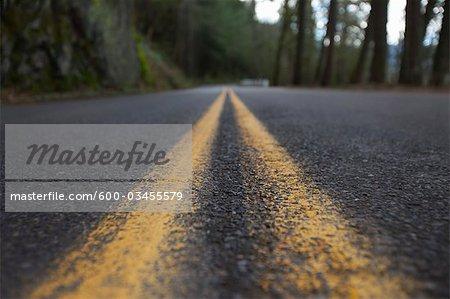 Historic Columbia River Highway, Oregon, Multnomah County, USA
