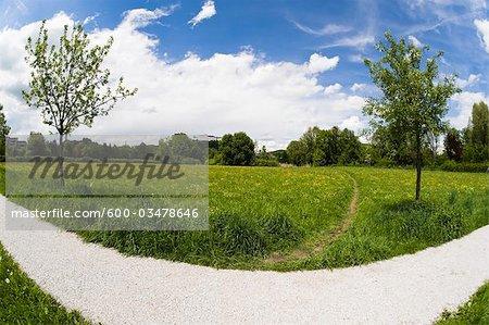Path, Salzburg, Austria