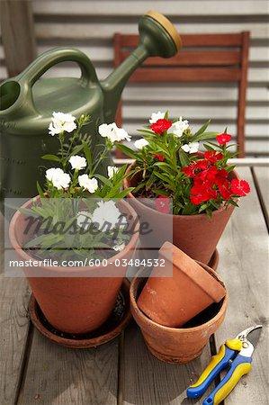 Topfpflanzen und Gartengeräte auf Dach Gartentisch