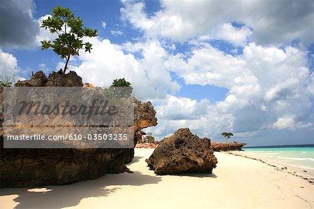 Tanzanie, Zanzibar (île d'Unguja), plage de Nungwi.