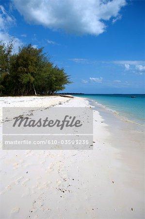 Tanzanie, Zanzibar (île d'Unguja), plage de vanessa.