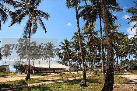 Tanzanie, Zanzibar (île d'Unguja), Pwani Mchangani.