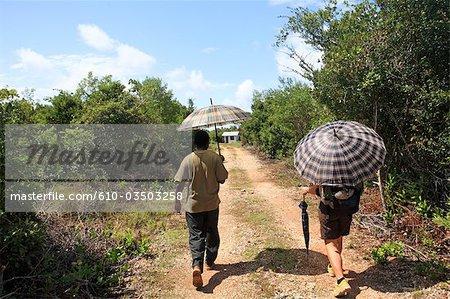 Tanzanie, Zanzibar (île d'Unguja), forêt de Jozani, touristique et son guide.