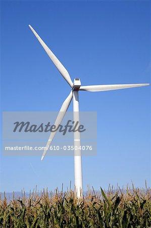 France, Normandie, Fécamp, le vent machine