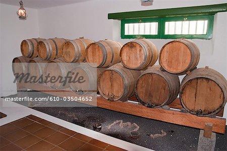 Spain, Canary islands, Lanzarote, cellar