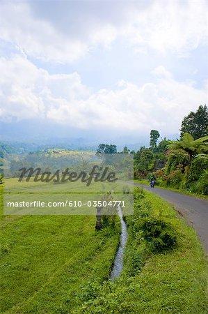 Indonesia, Bali, mountain road