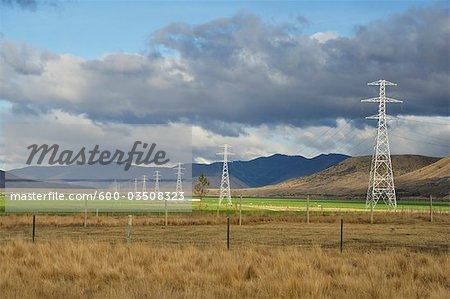 Terres agricoles, près de Twizel, Canterbury, South Island, Nouvelle-Zélande
