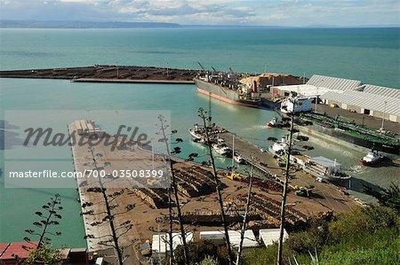 Port de Napier, Hawke Bay, North Island, Nouvelle-Zélande