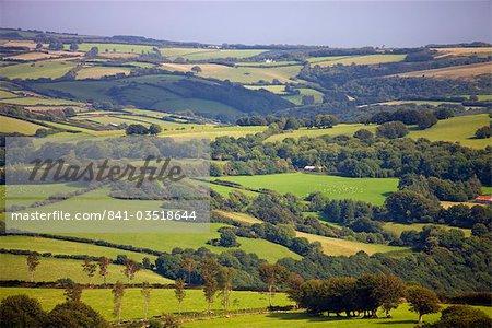 Rolling green landscape in summertime, Exmoor National Park, Somerset, England, United Kingdom, Europe