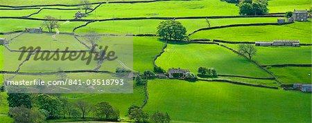 Voir toute les Yorkshire Dales près de Reeth Swaledale, Yorkshire, Angleterre, Royaume-Uni, Europe