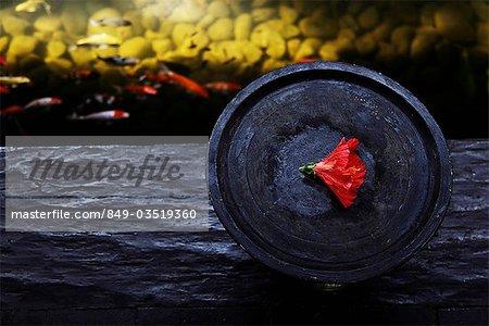 bol en bois avec fleur rouge près d'étang à poissons