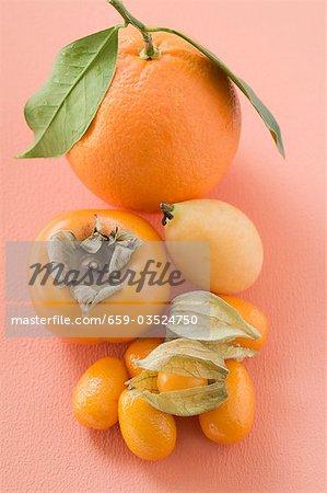 Assortiments de fruits exotiques et d'agrumes