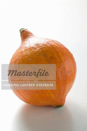Orange citrouille (Hokkaido)