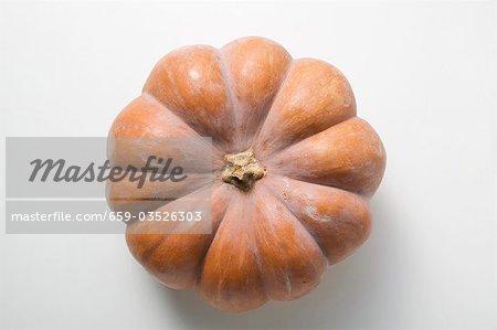 Pumpkin (overhead view)
