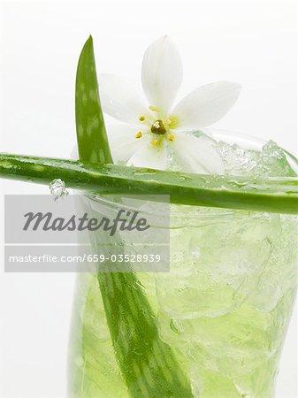 Aloe vera juice with ice cubes (close-up)